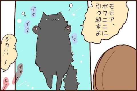 img_kuronishiki_asahi_04